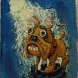 Bull Dog in the Moonlight