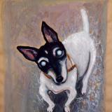 Old Blind Dog in Edinburgh